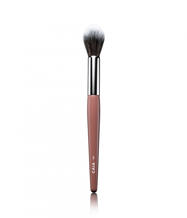 Pointed Highlighter Brush 09 Makeup Brushes